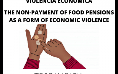 EL IMPAGO DE PENSIONES DE ALIMENTOS ES VIOLENCIA ECONOMICA